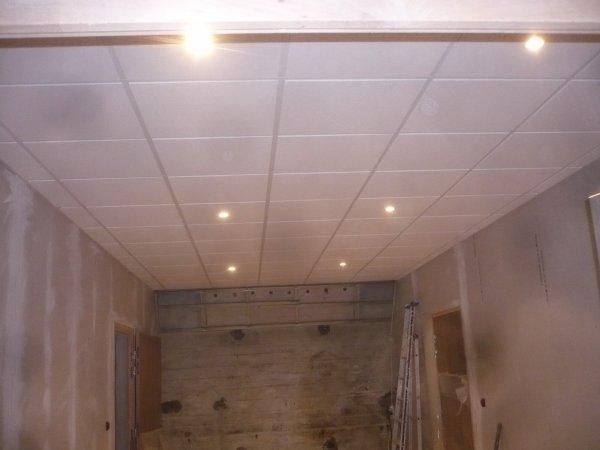finition de tout les ouvrages faux plafond placo parquets ect fin du chantier encore un peut. Black Bedroom Furniture Sets. Home Design Ideas
